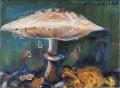 Marja Viskari: Sieni ja sammakko
