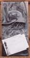 Helena Asp: Kirje kotiin